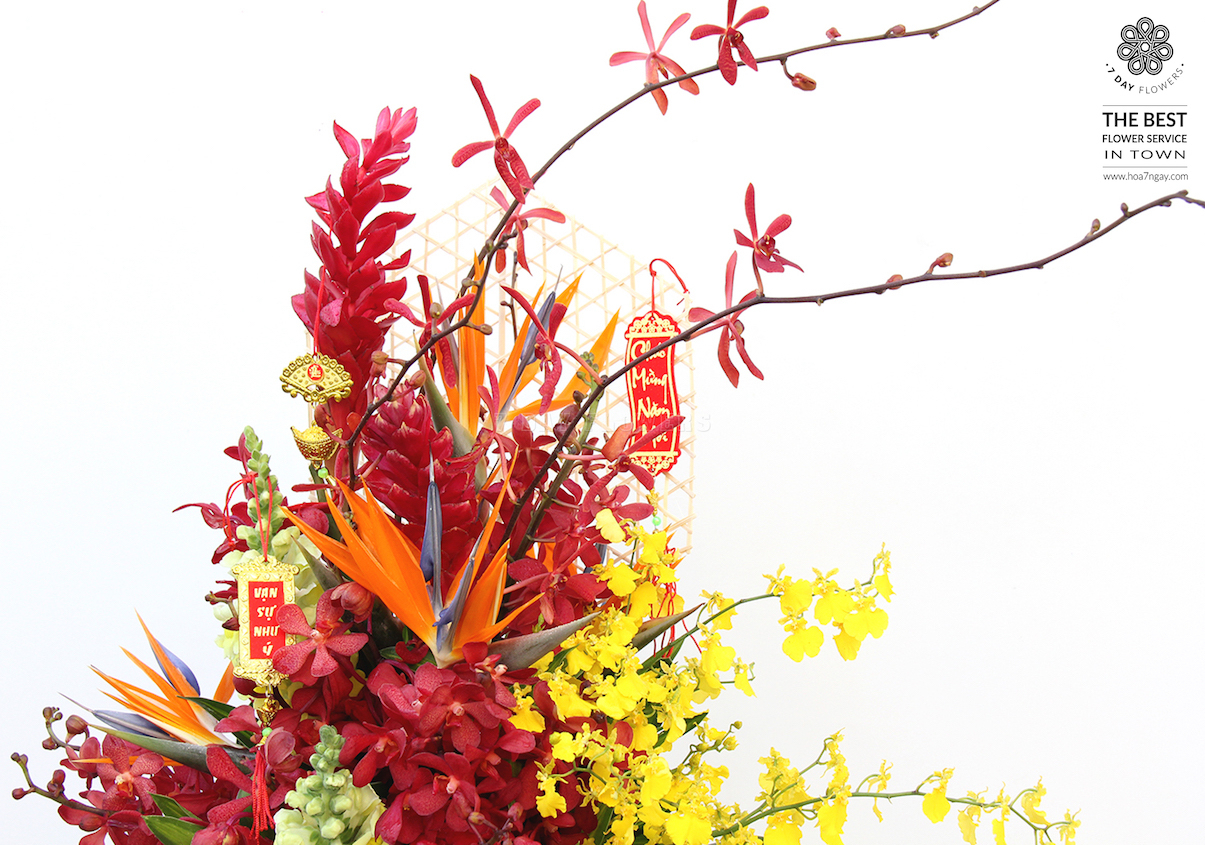 Hoa hội nghị đẹp với Hoa 7 Ngày